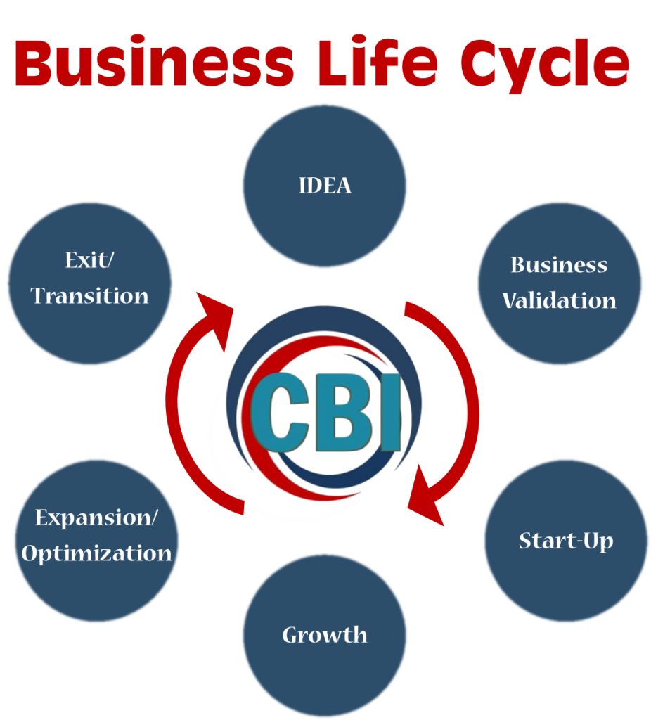 Biz Life Cycle